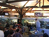 20111022-Cicerellos.jpg
