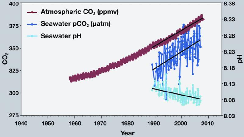 Atmospheric CO2 and seawater acidity observations